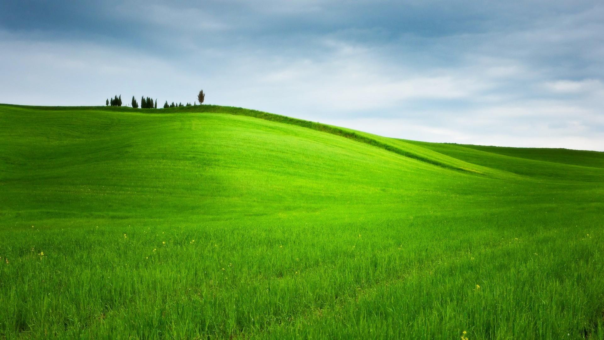 картинка зеленые холмы утвердительный