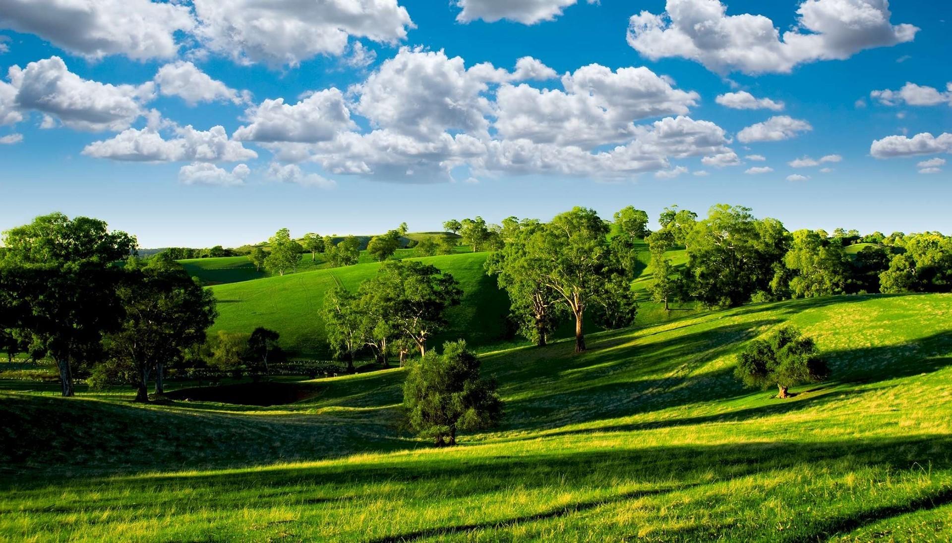 обои для рабочего стола зеленый пейзаж № 467748 бесплатно