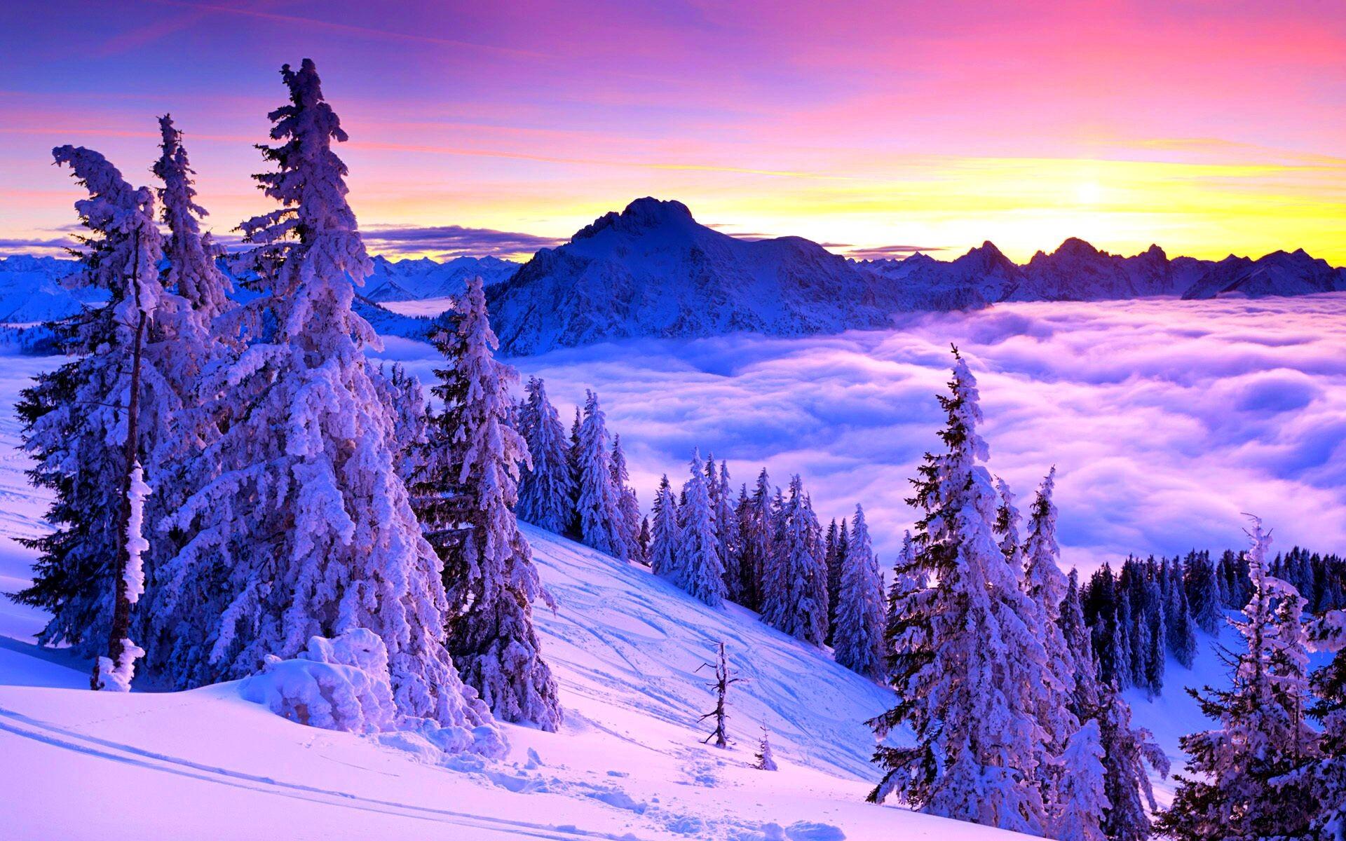 Пейзажи природы фото зима
