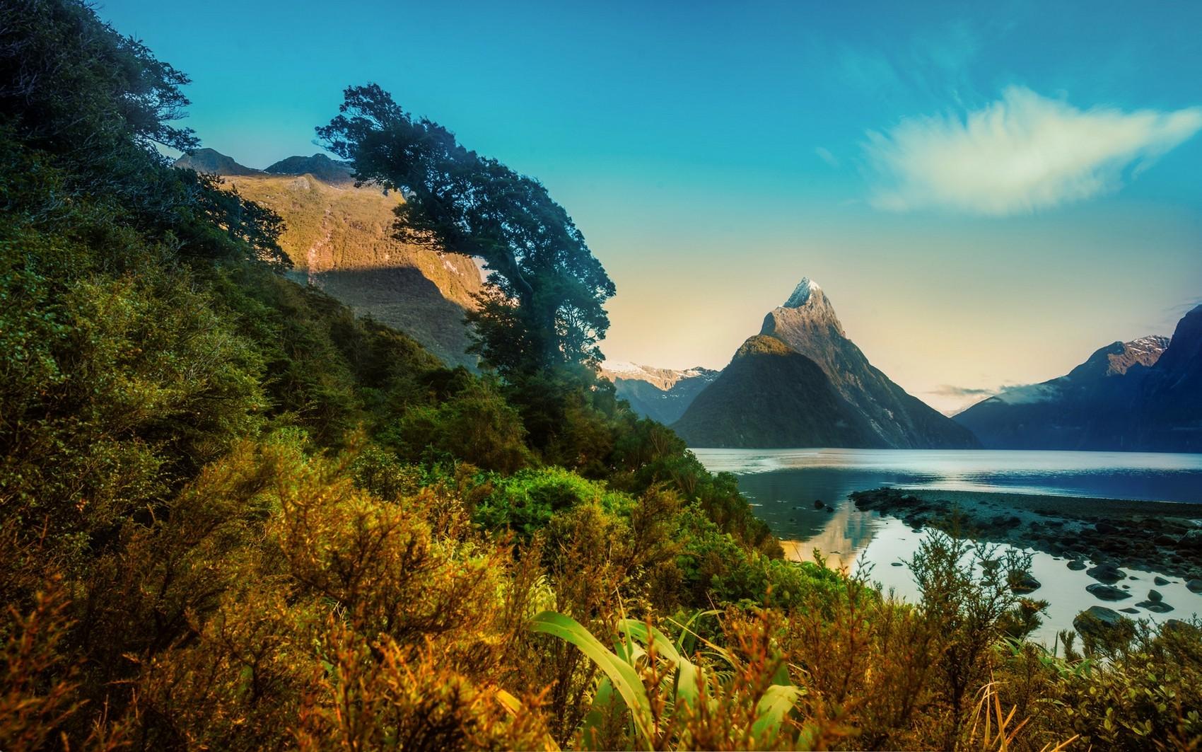 Картинки природа новой зеландии