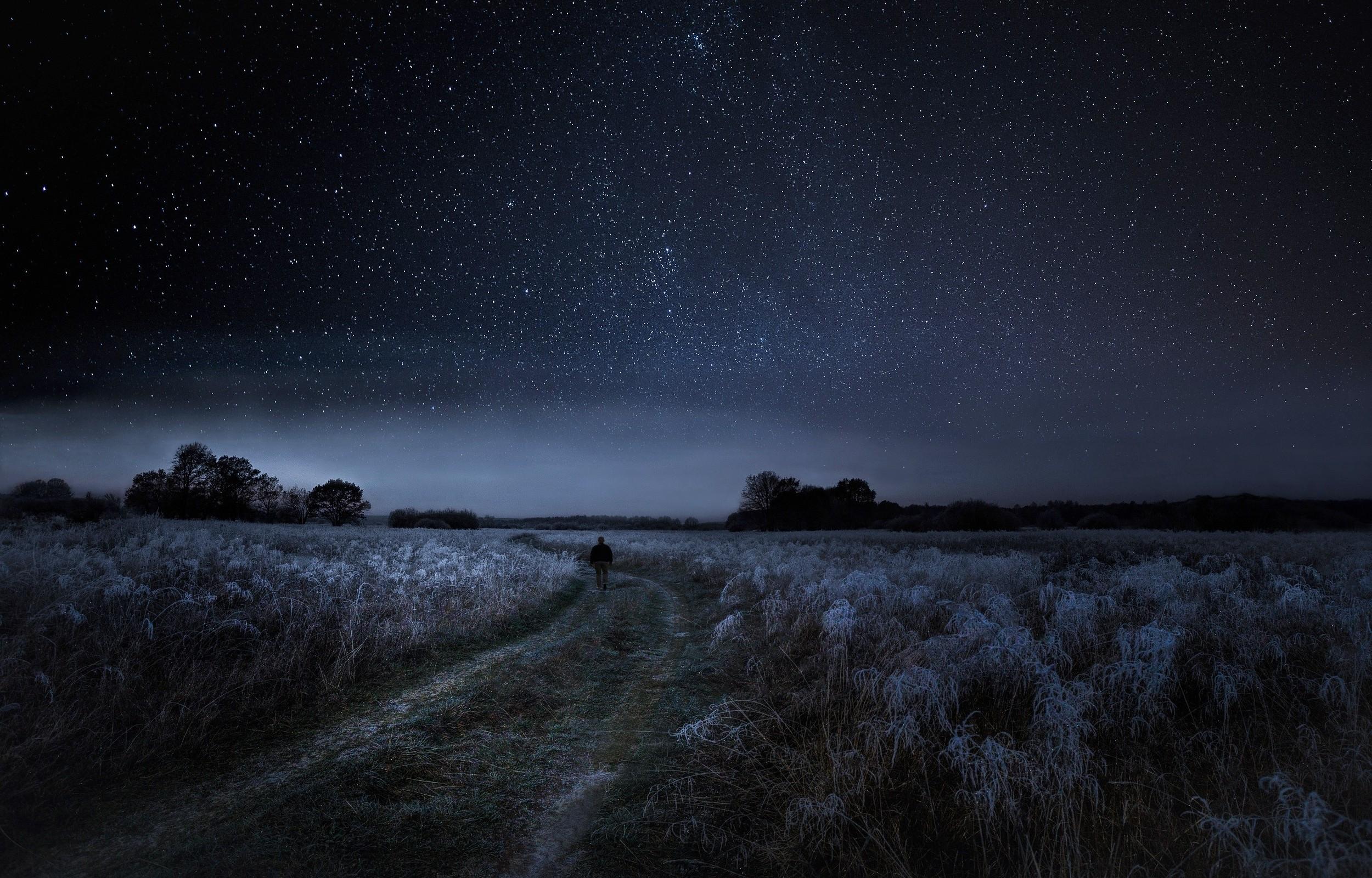 картинки в поле ночью среду госкомиссия