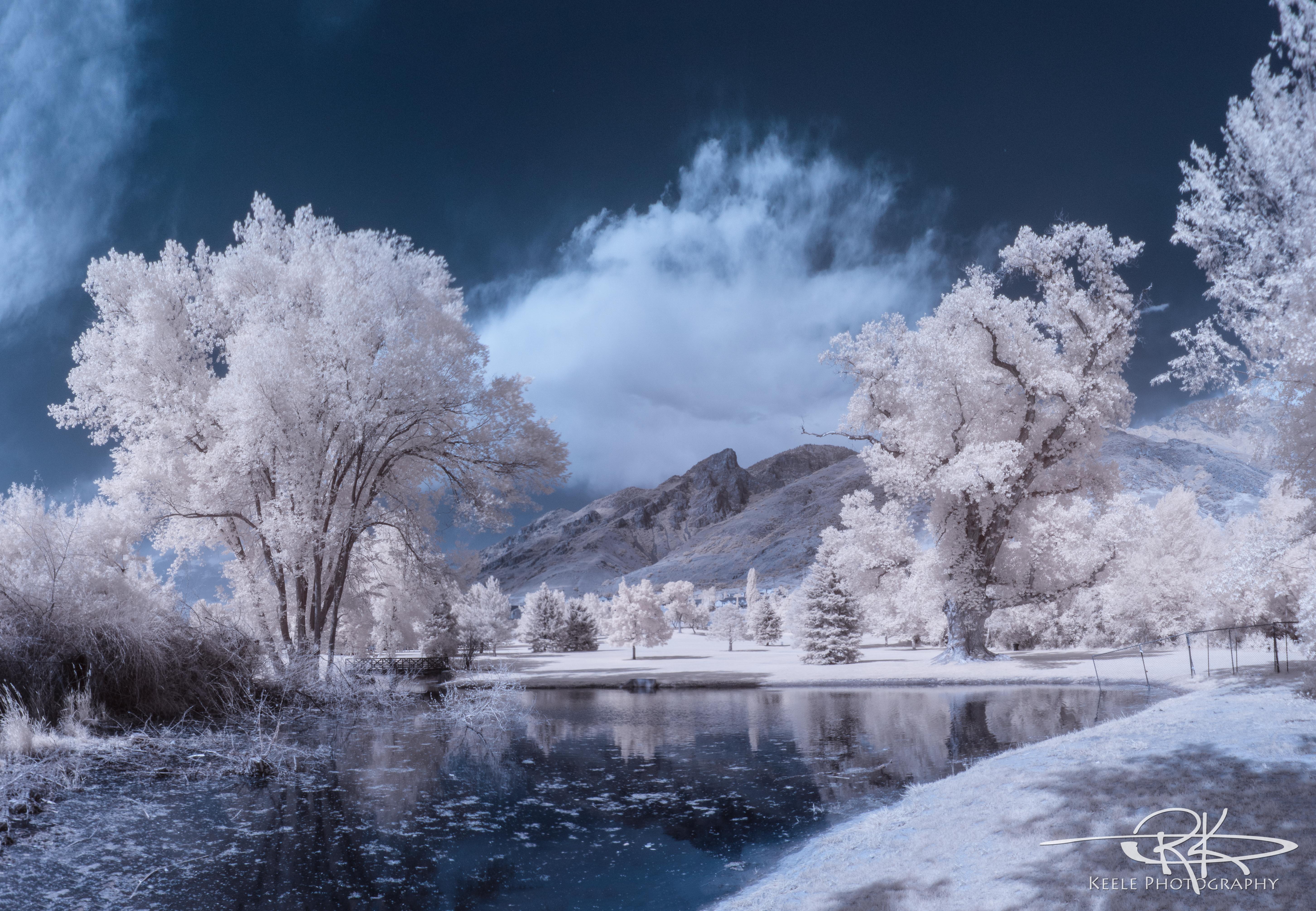 Wallpaper  trees, landscape, white, lake, water, nature ...