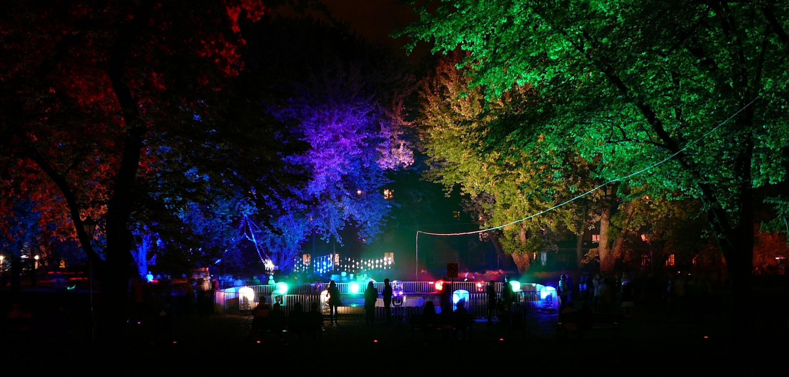 Weihnachtsbeleuchtung Bunt.Hintergrundbilder Bäume Beleuchtung Bunt Nacht Park