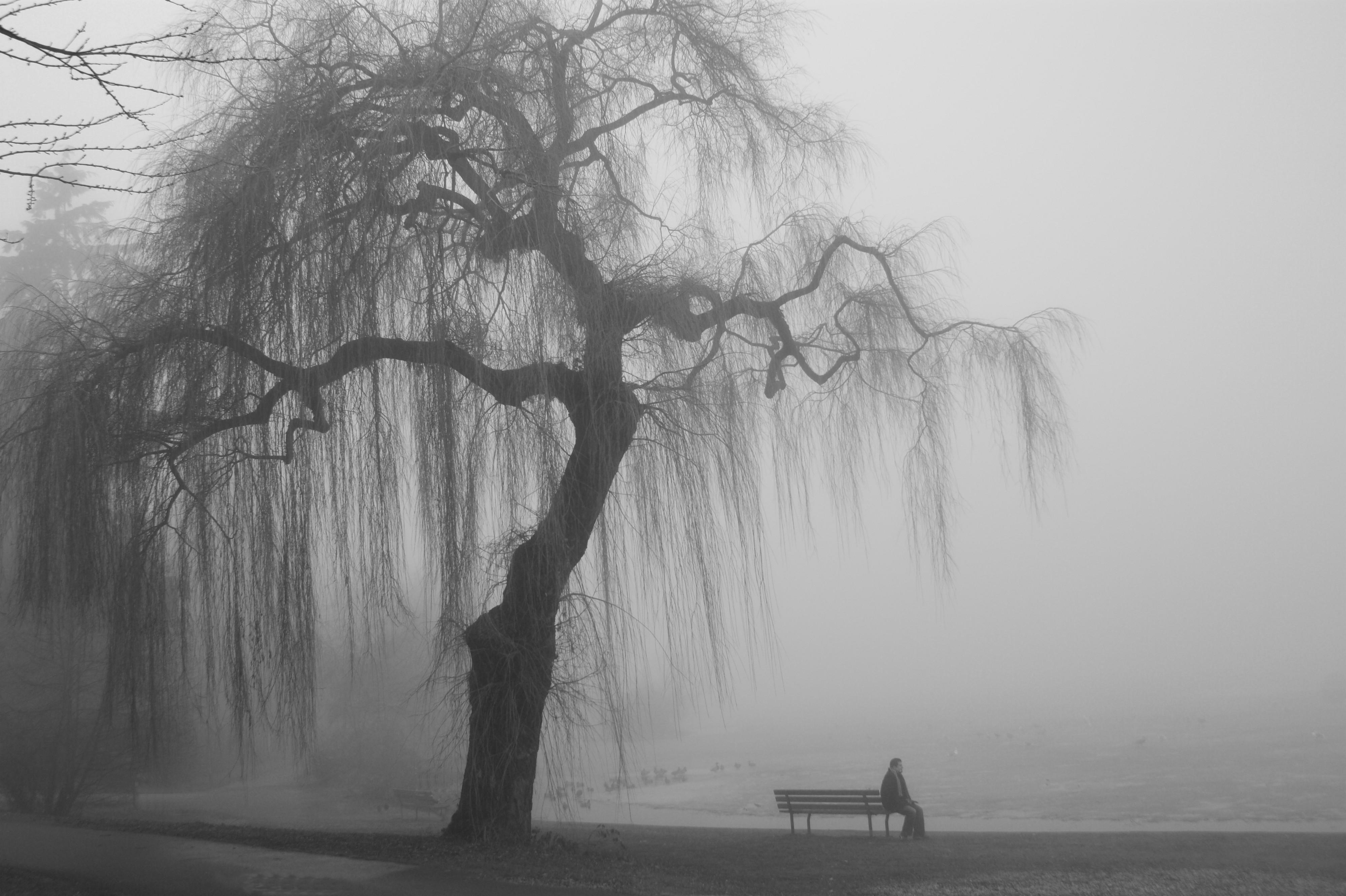 наша открытка картинка одинокого грустного берег над колымой