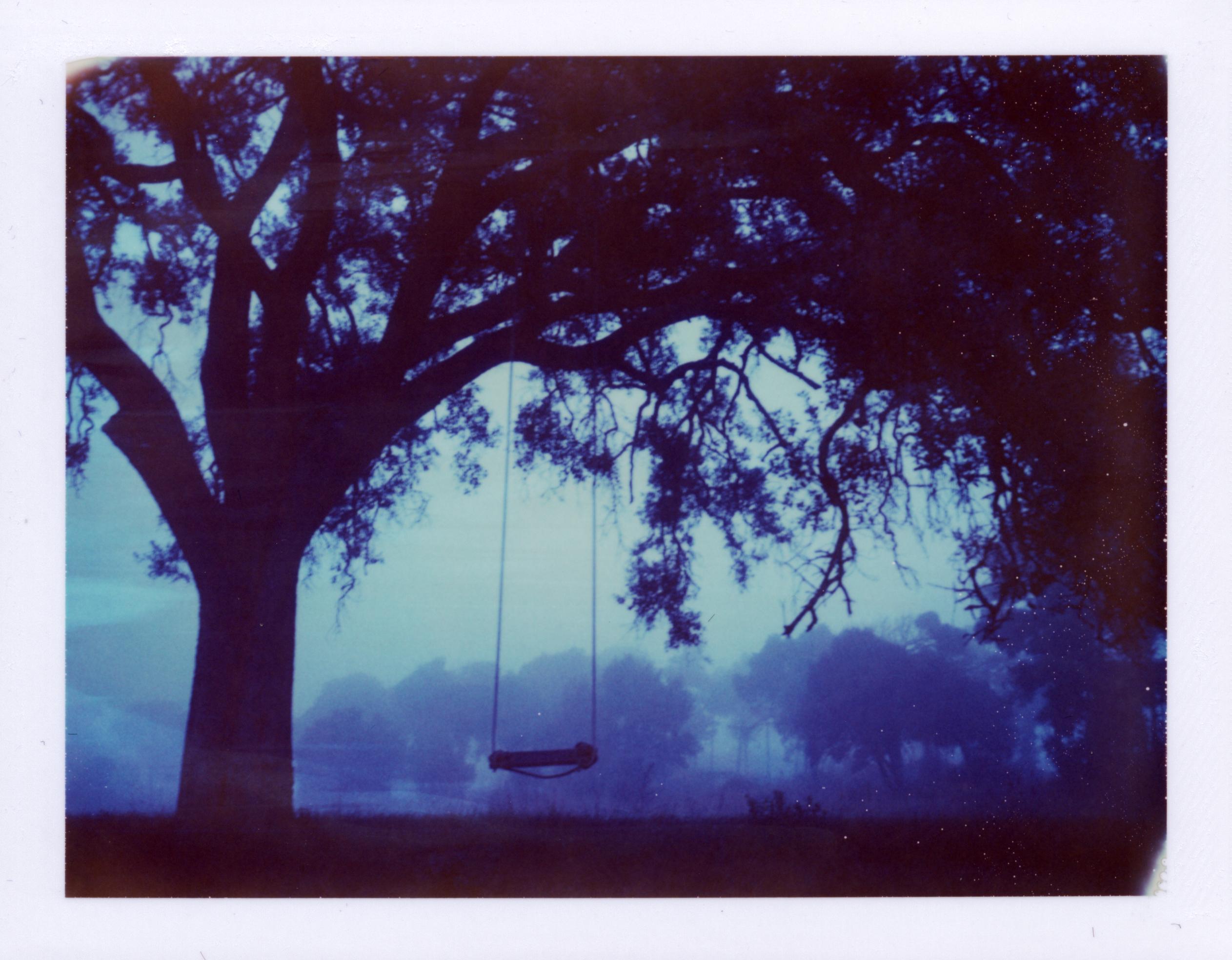 Hintergrundbilder : Bäume, Malerei, Himmel, Kunstwerk, lila, Ast ...
