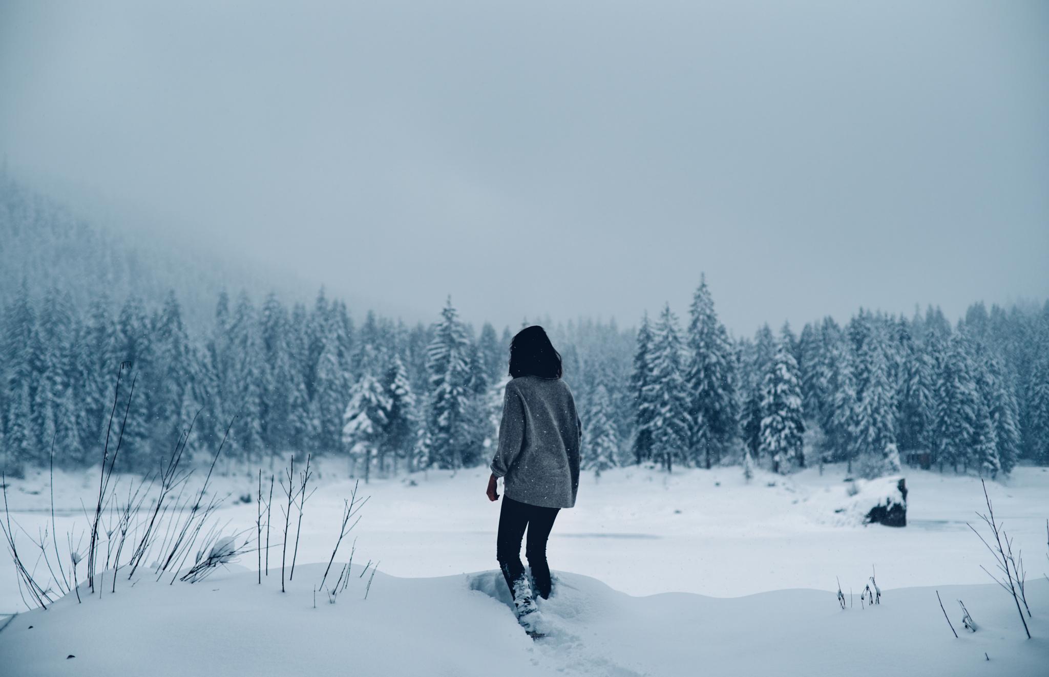 взят картинки человек в далеке зимой восточная женщина