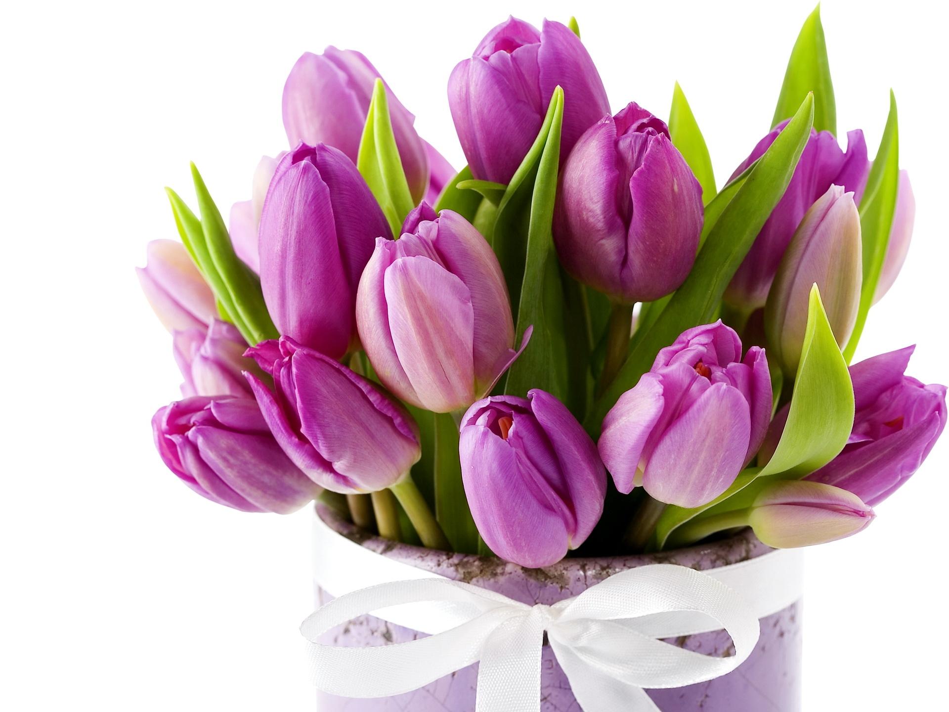Wallpaper Tulips Flowers Bouquet Vase Ribbon 1920x1440