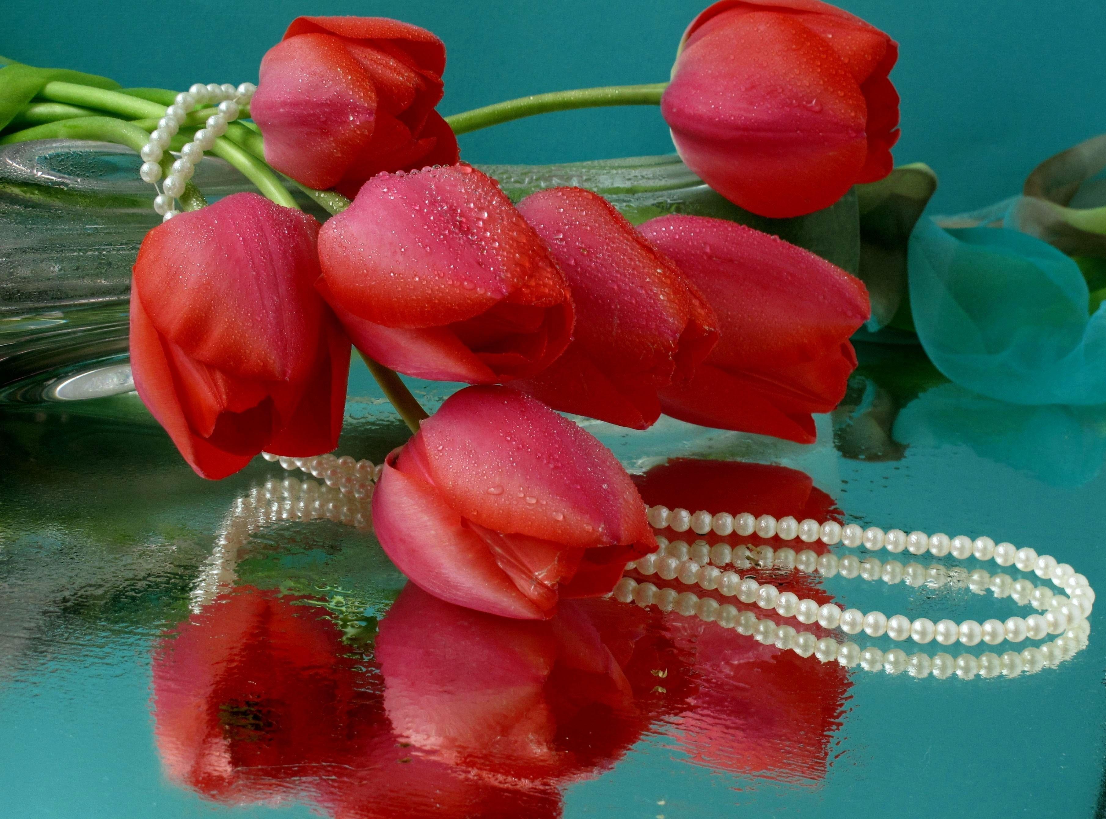 Тюльпаны для тебя картинки гиф шелковые, хлопчатобумажные
