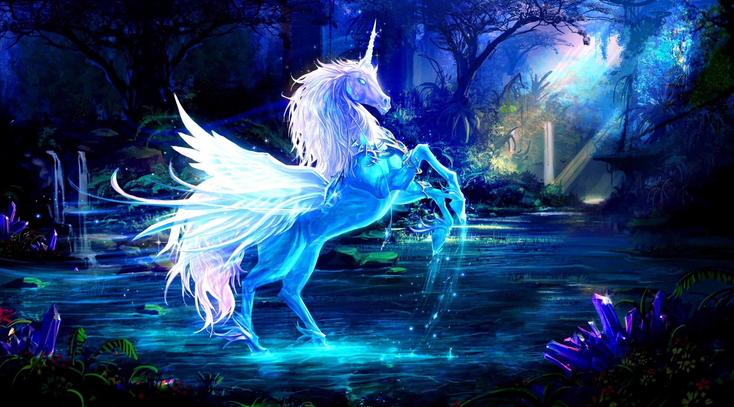 Fondos De Pantalla Unicornio Agua Bosque Noche Magia 2560x1420
