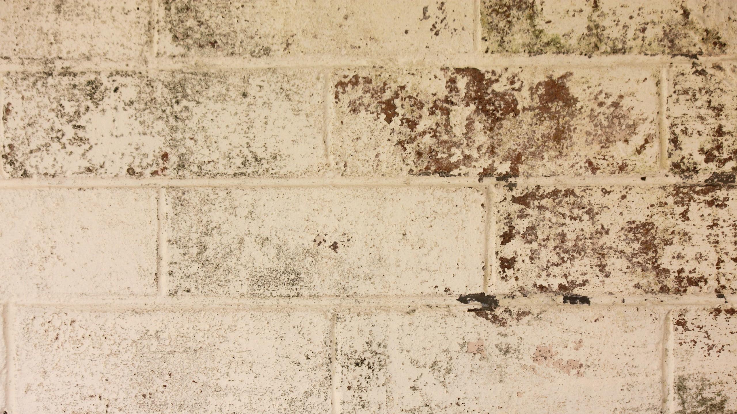 Archivio immagini vecchio muro di mattoni in praga come