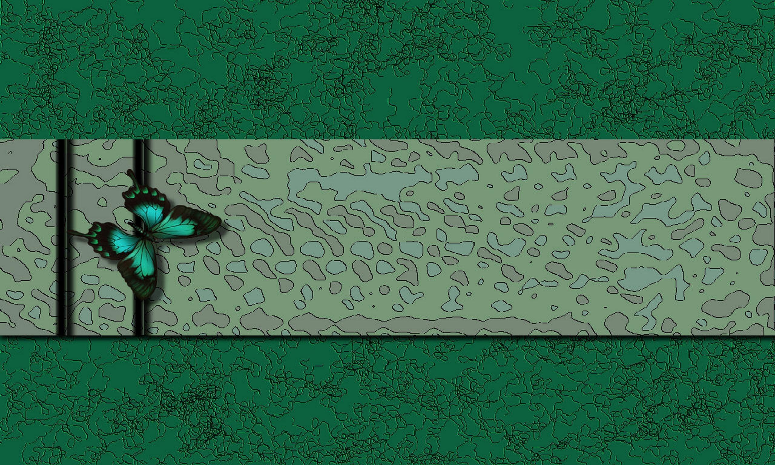 Wallpaper : wall, text, butterfly, green, blue, pattern, texture ...