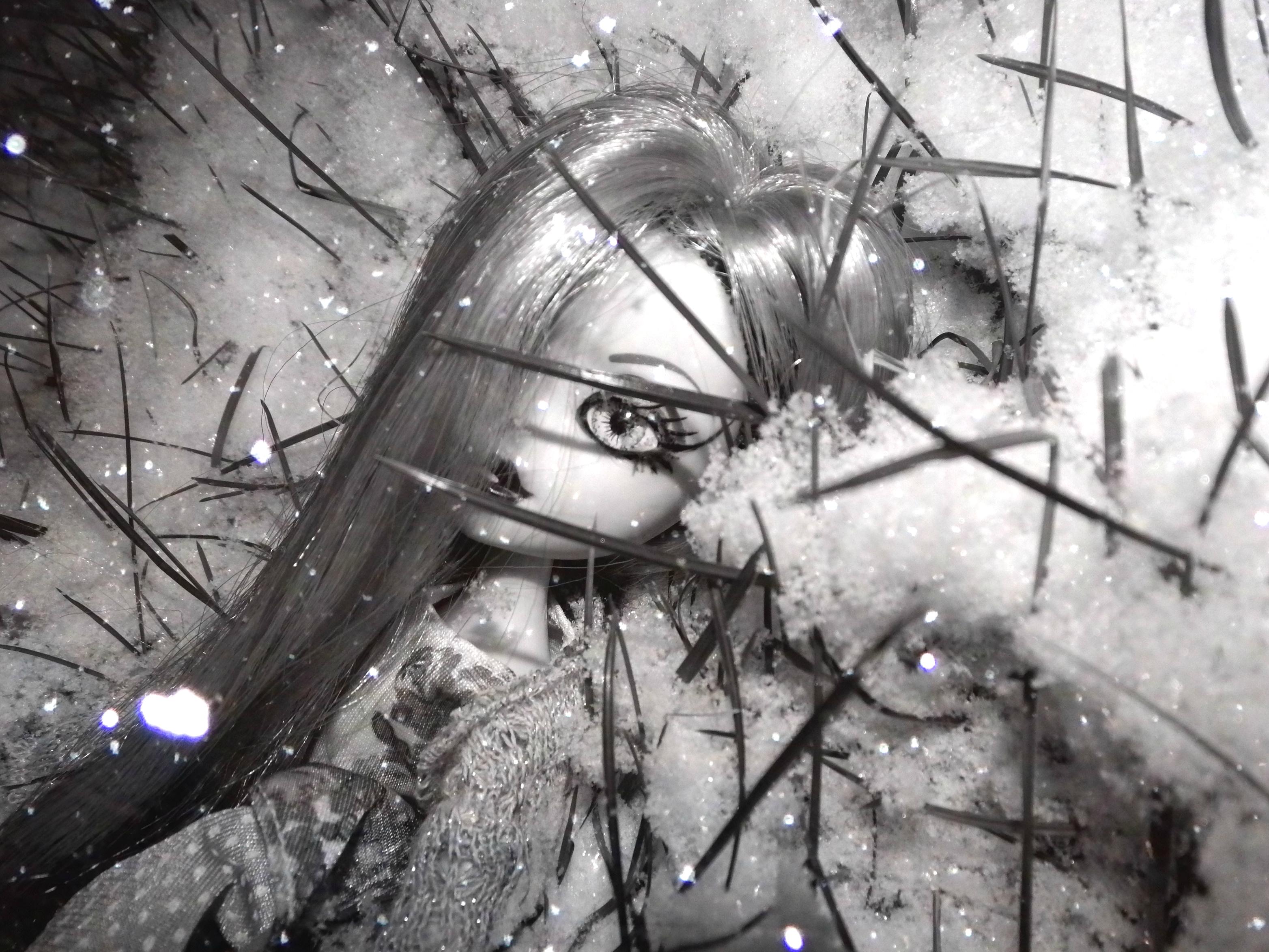 Fondos de pantalla : blanco, negro, rubia, césped, nieve, invierno ...