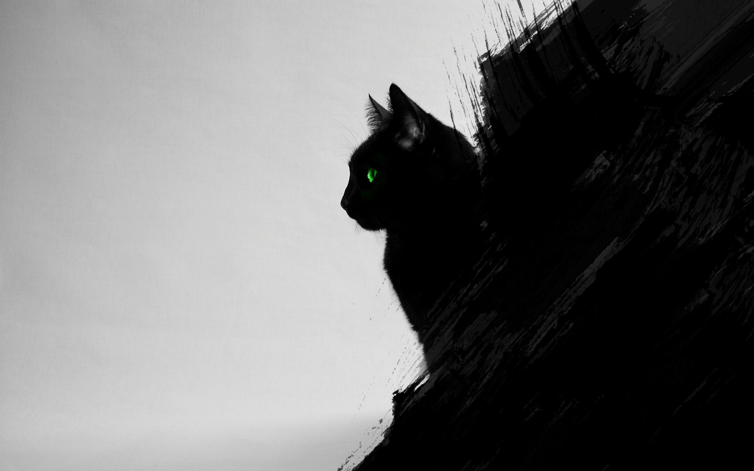 Wallpaper Digital Art Animals Green Eyes Artwork Silhouette