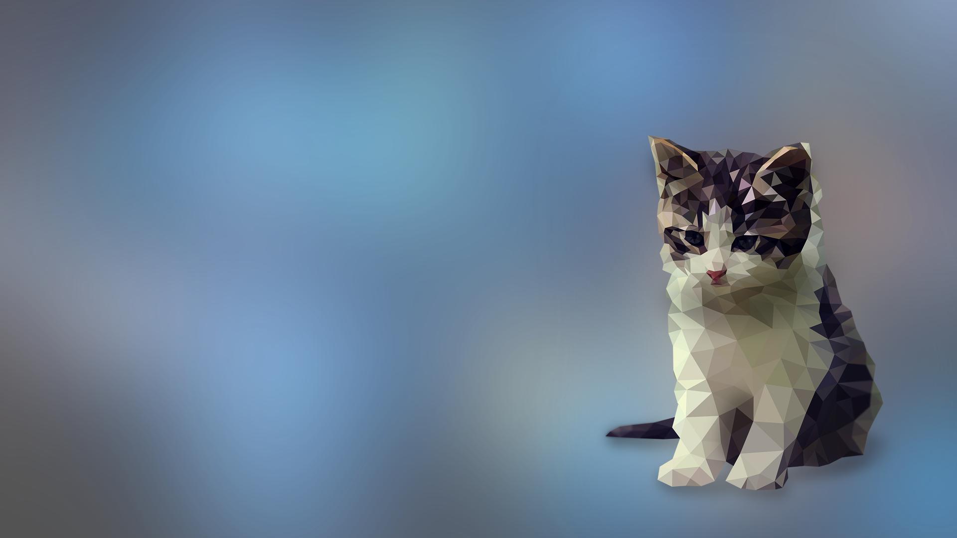 White Cat Digital Art Animals Low Poly Blue Kittens Whiskers Kitten Mammal Vertebrate Close Up