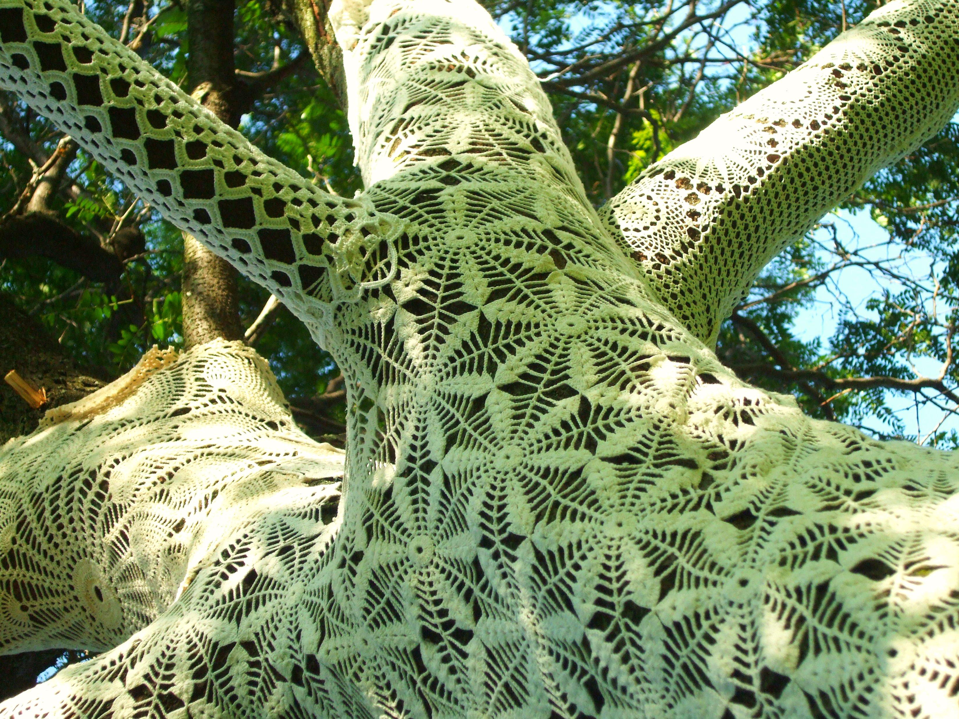 Hintergrundbilder : Weiß, Gras, Ast, Grün, Muster, Spitze, Baum ...