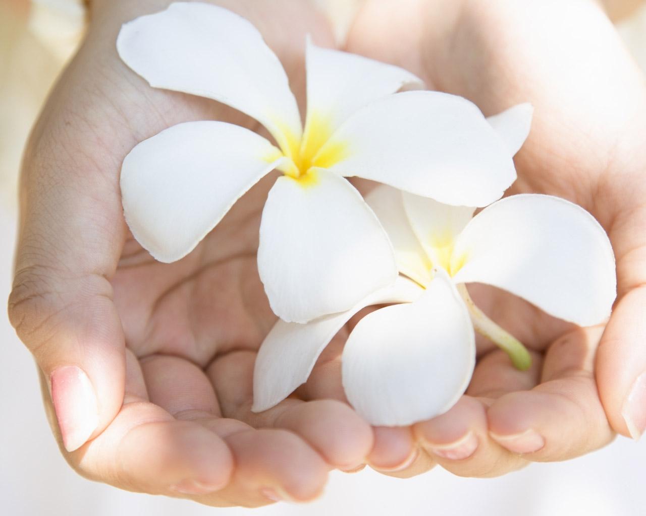 фото цветы на ладонях объявили