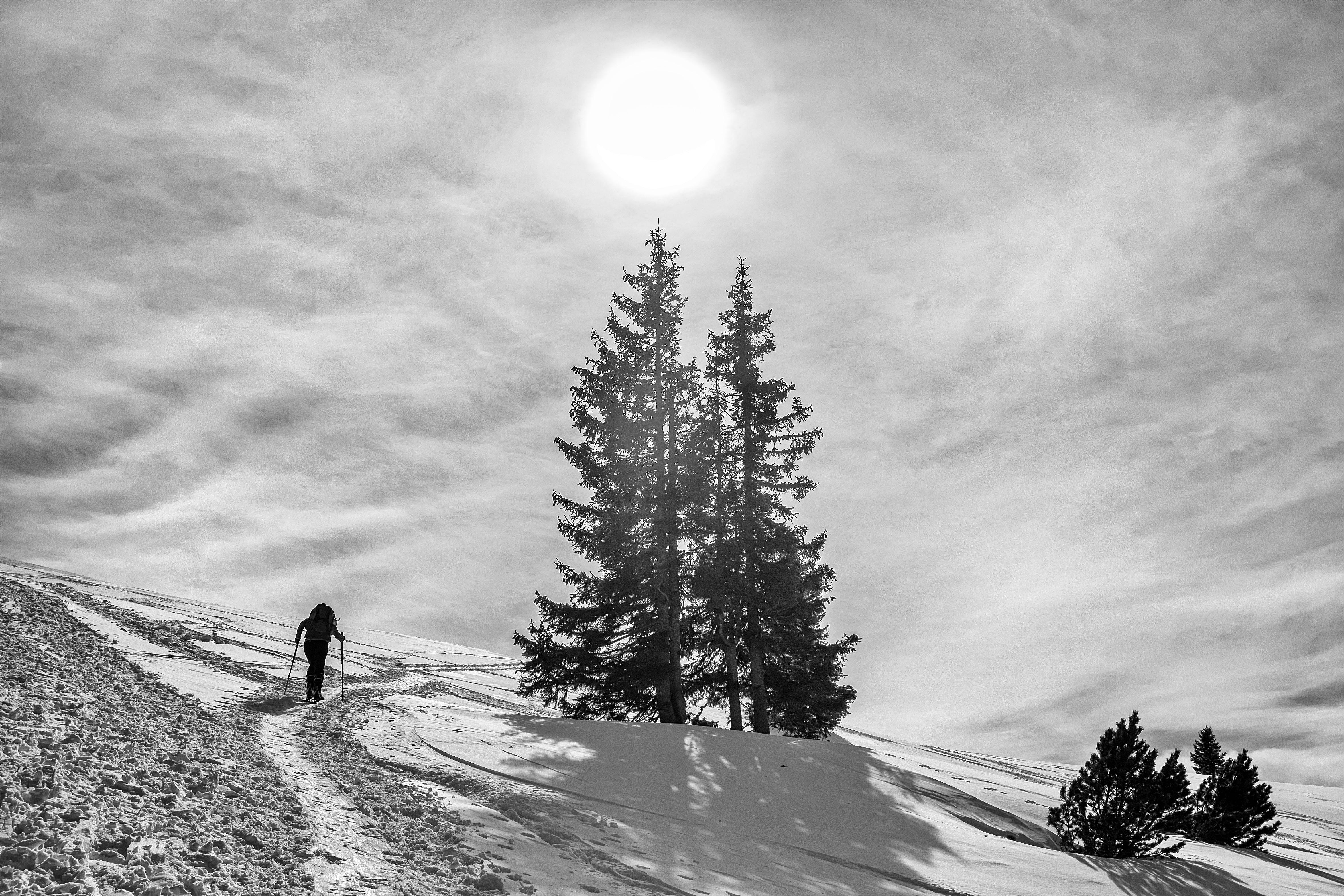 Sfondi Bianca Montagne Monocromo La Neve Inverno Austria