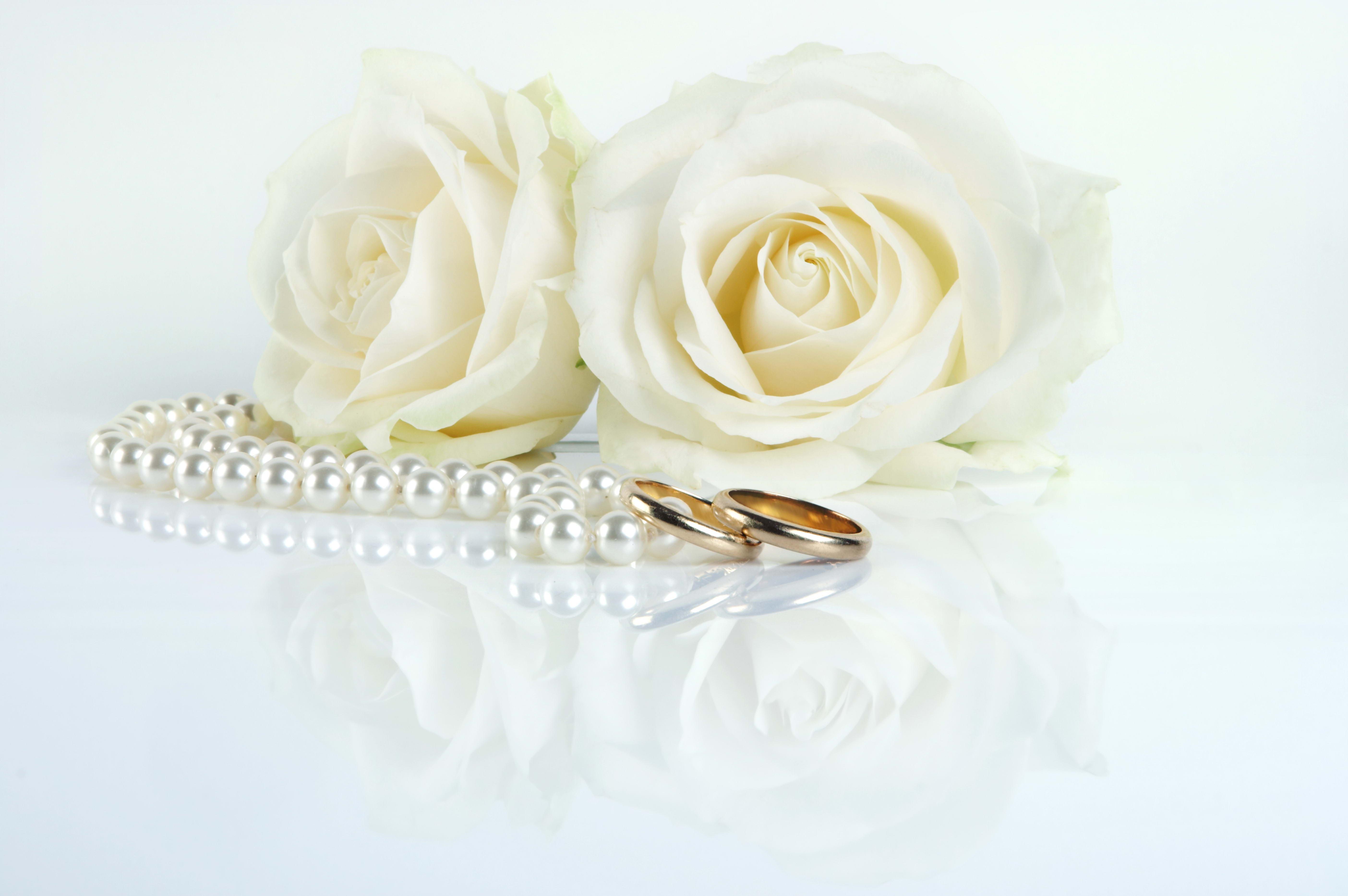 Открытки к свадьбе высокого разрешения, открытки зайцем
