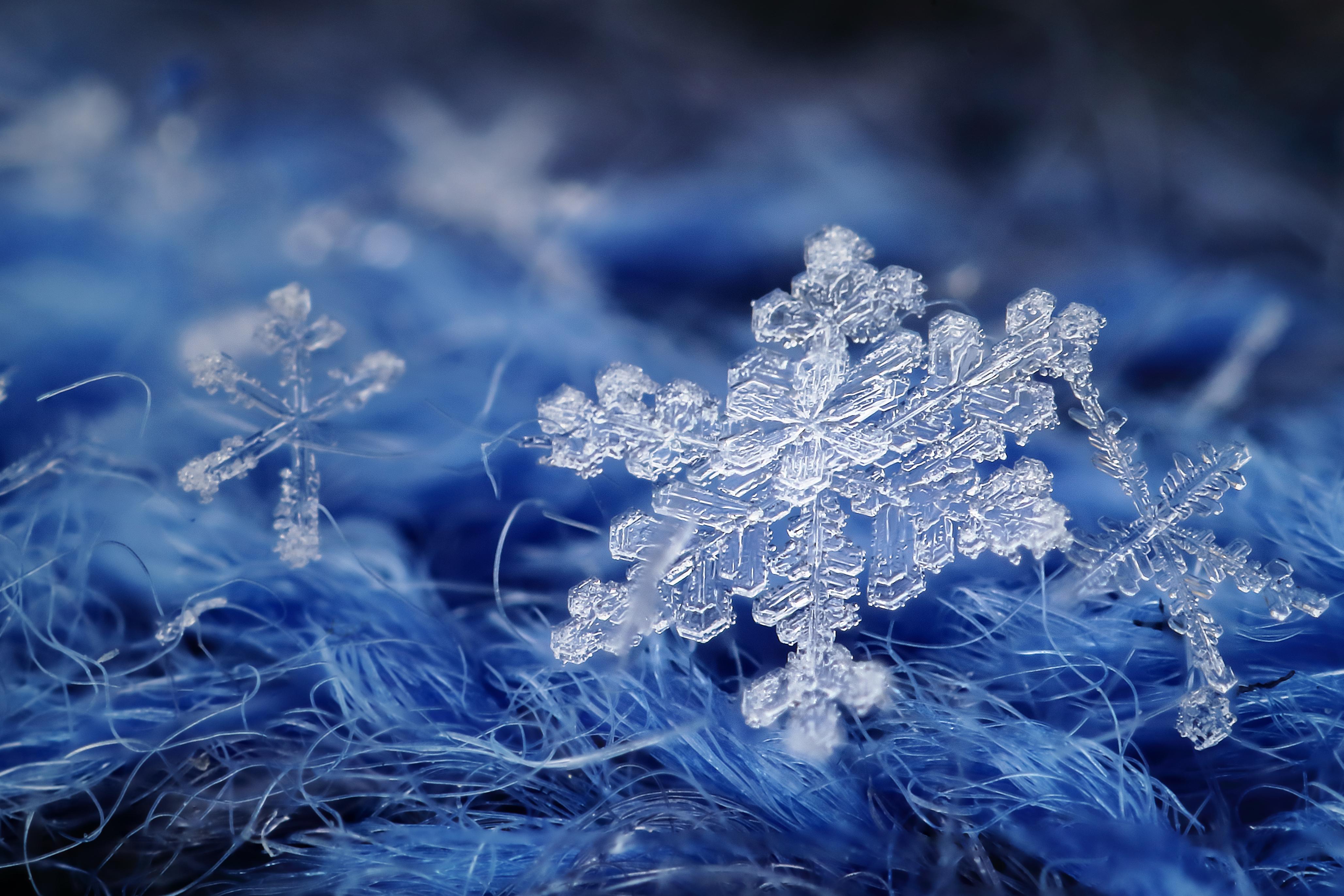 своими руками картинки зима природа снежинки как будто некоторые