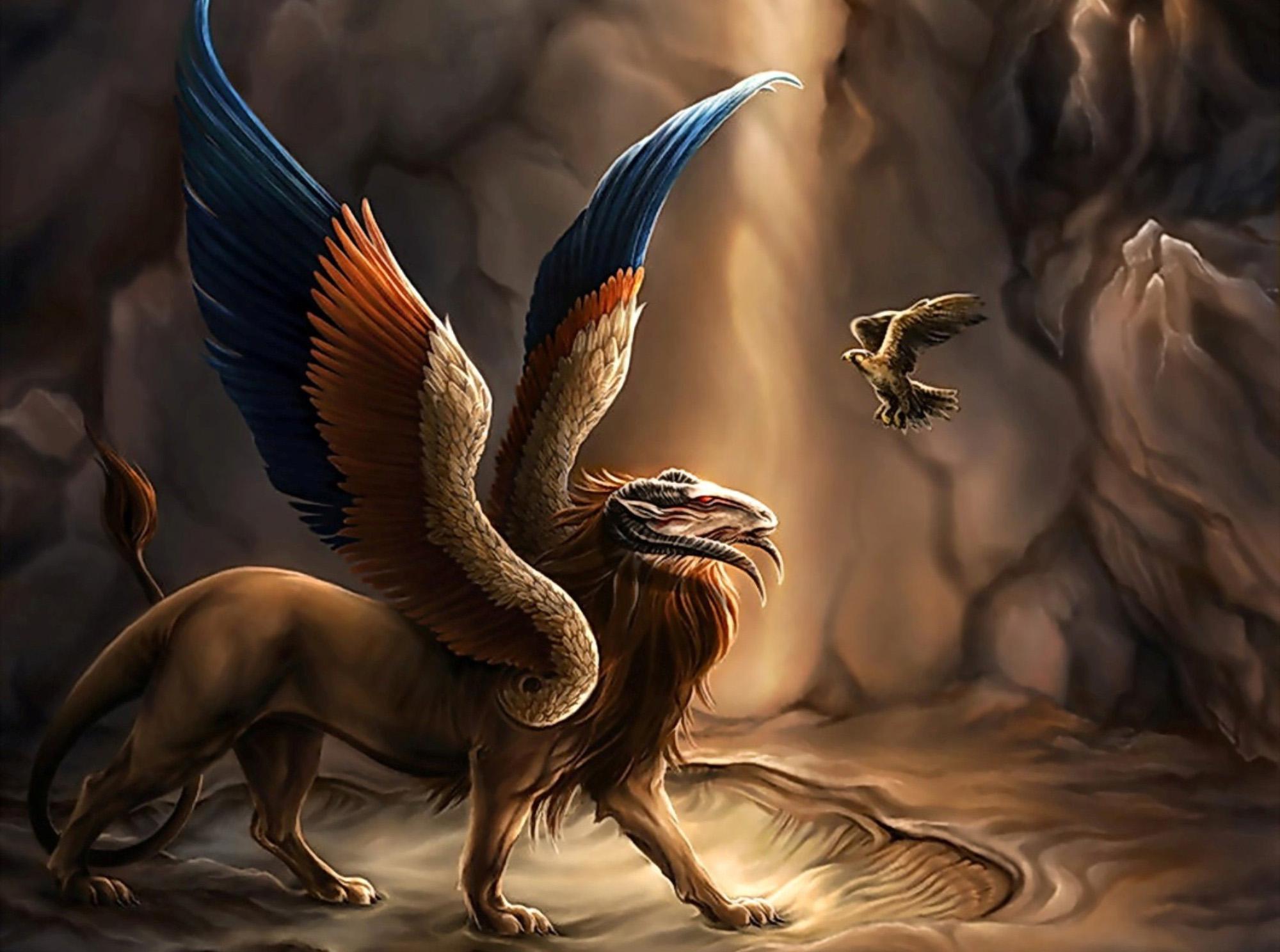 могут картинки фэнтези мистика драконы развязать