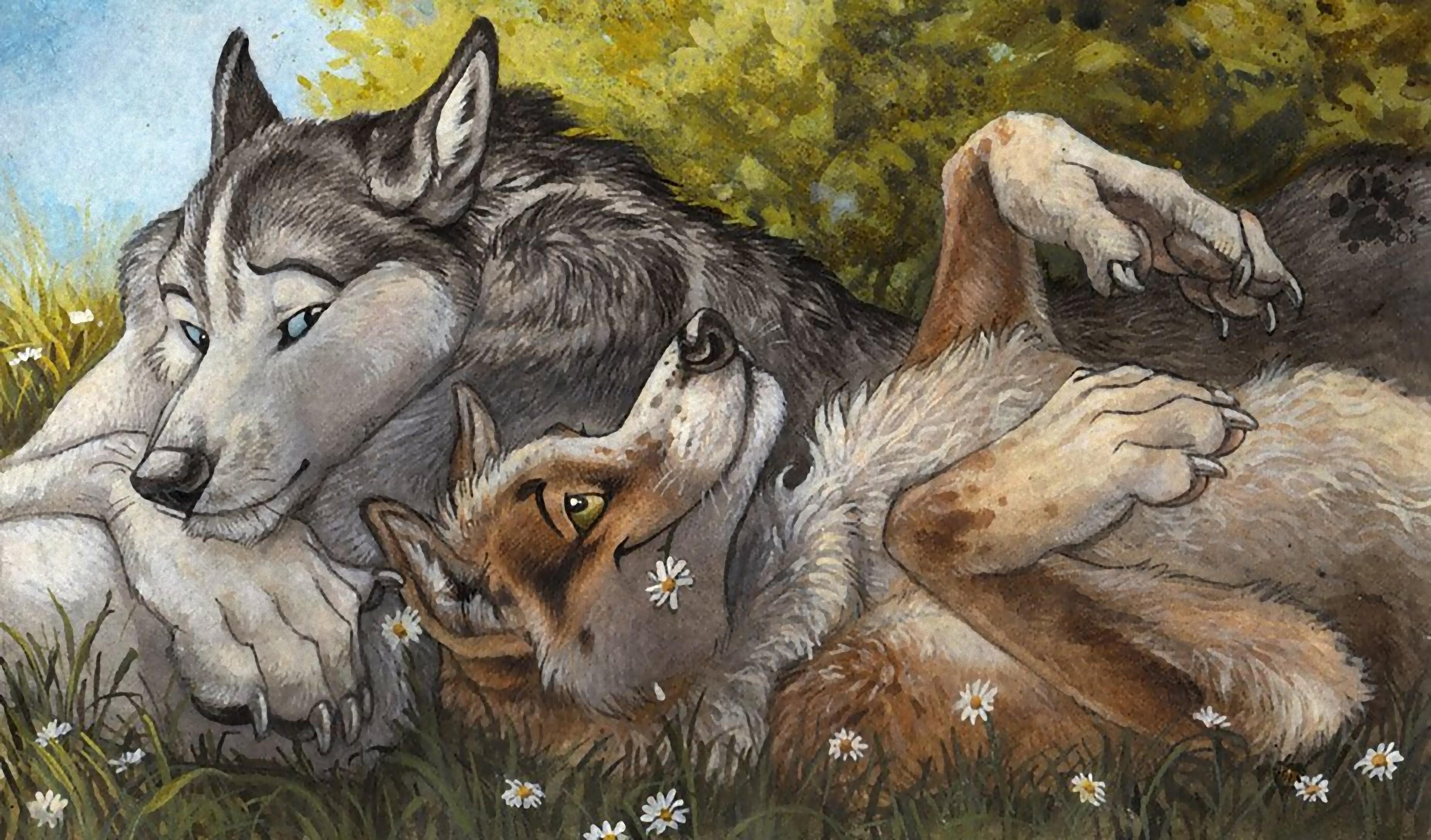 картинки пес и волк одна волчица а пес по всем занялся репортажной