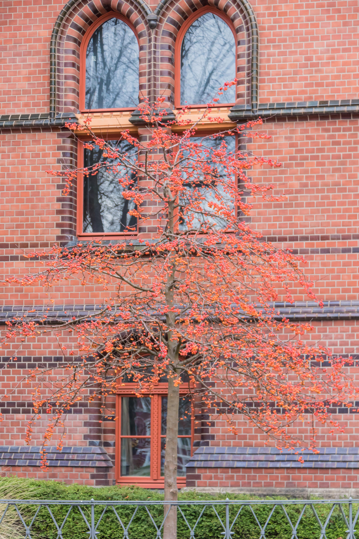 Hintergrundbilder Fenster Gebaude Rot Mauer Holz Deutschland