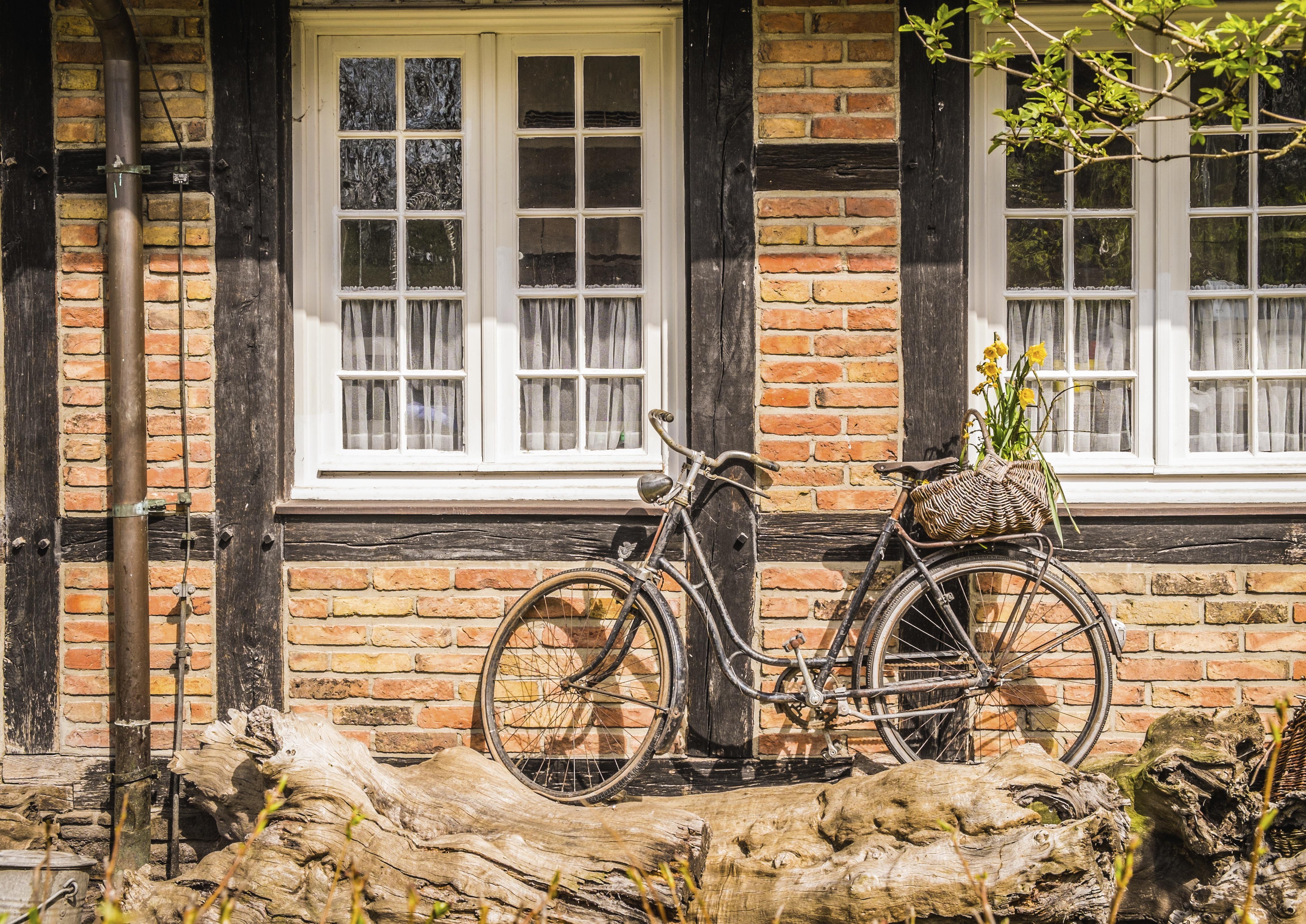 Fondos de pantalla : ventana, Flores, vehículo, pared, madera, casa ...