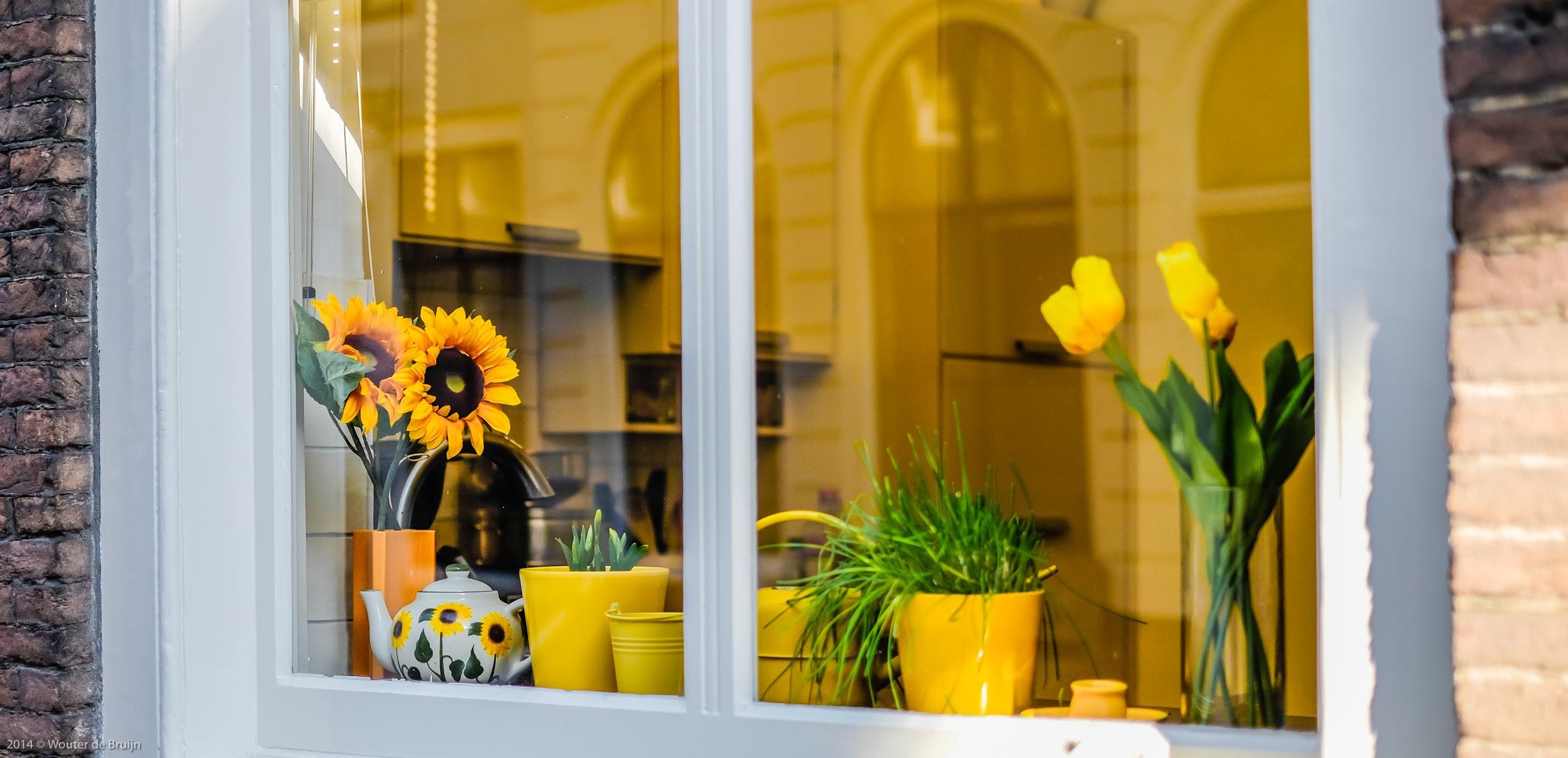 Sfondi finestra fiori piante tulipani giallo cucina for Finestra con fiori disegno