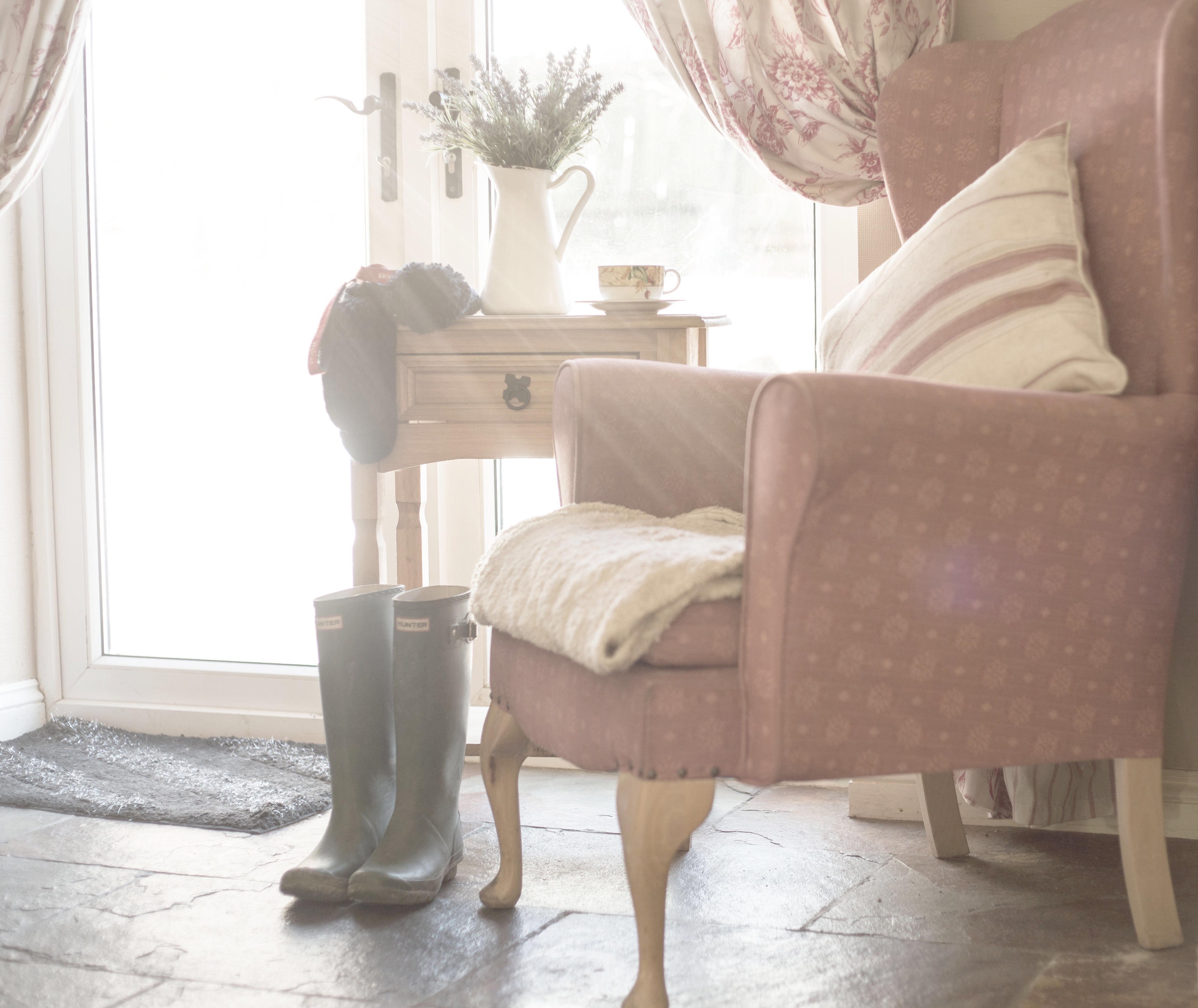 bodenbelag wohnzimmer hund, hintergrundbilder : fenster, blumen, zimmer, bett, winter, tabelle, Design ideen