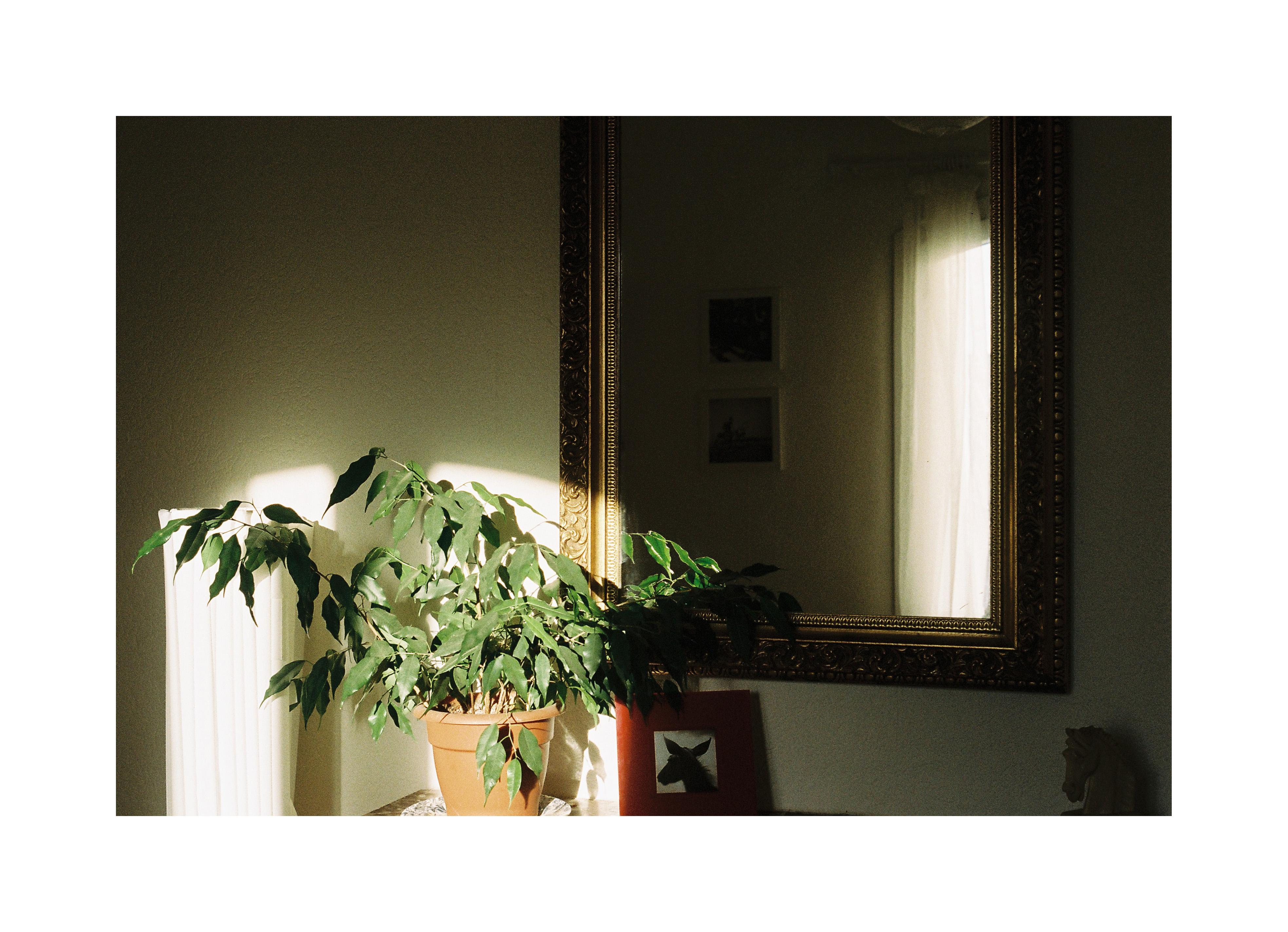 Sfondi : finestra, specchio, Nikon, Francia, Parigi ...