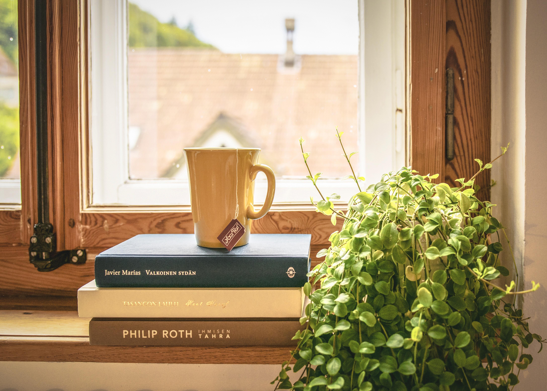 Davanzale Interno Della Finestra sfondi : camera, legna, verde, tè, tazza, interior design