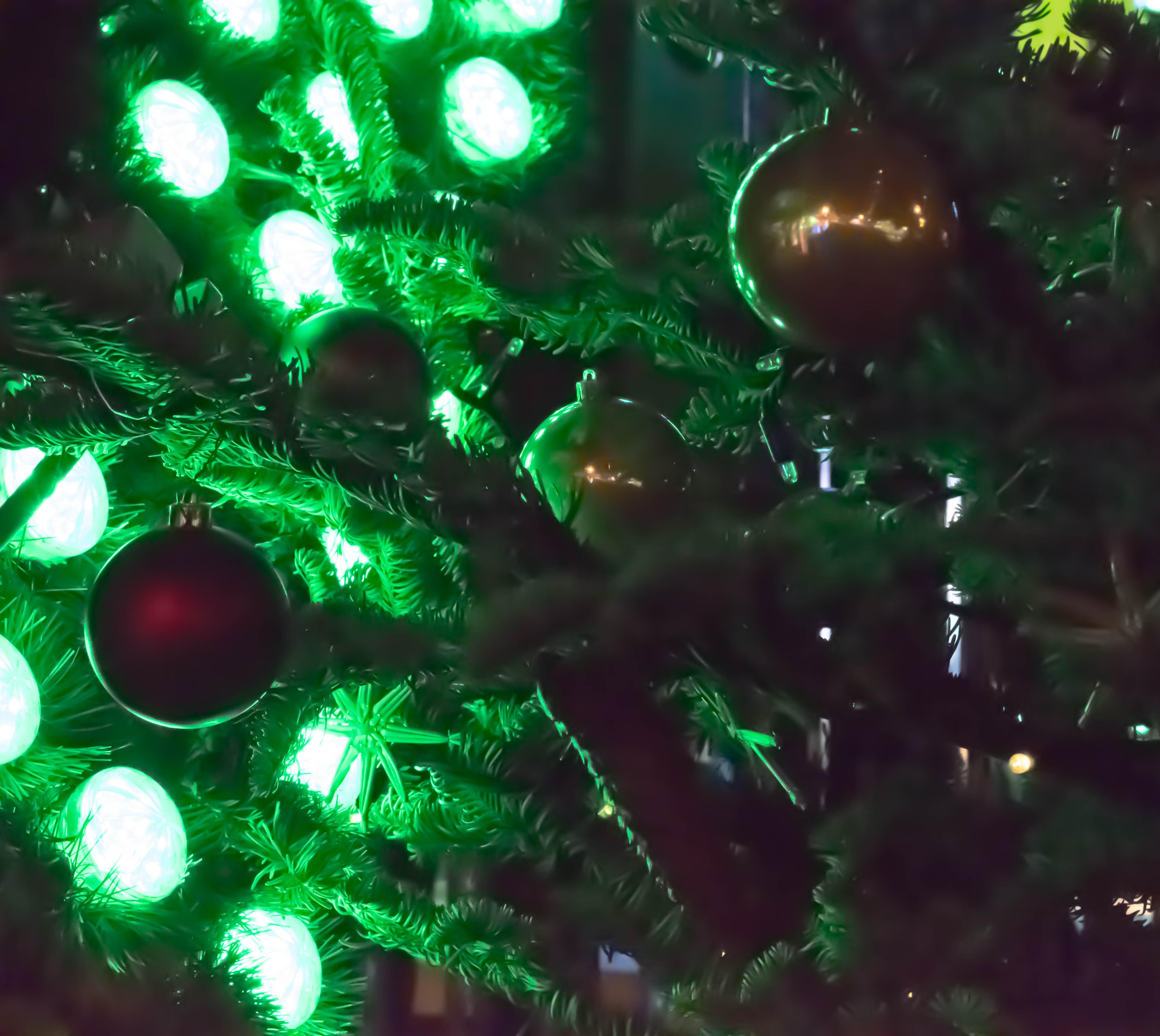 Christmas In Europe Wallpaper.Wallpaper Winter Branch Green Germany Christmas Tree