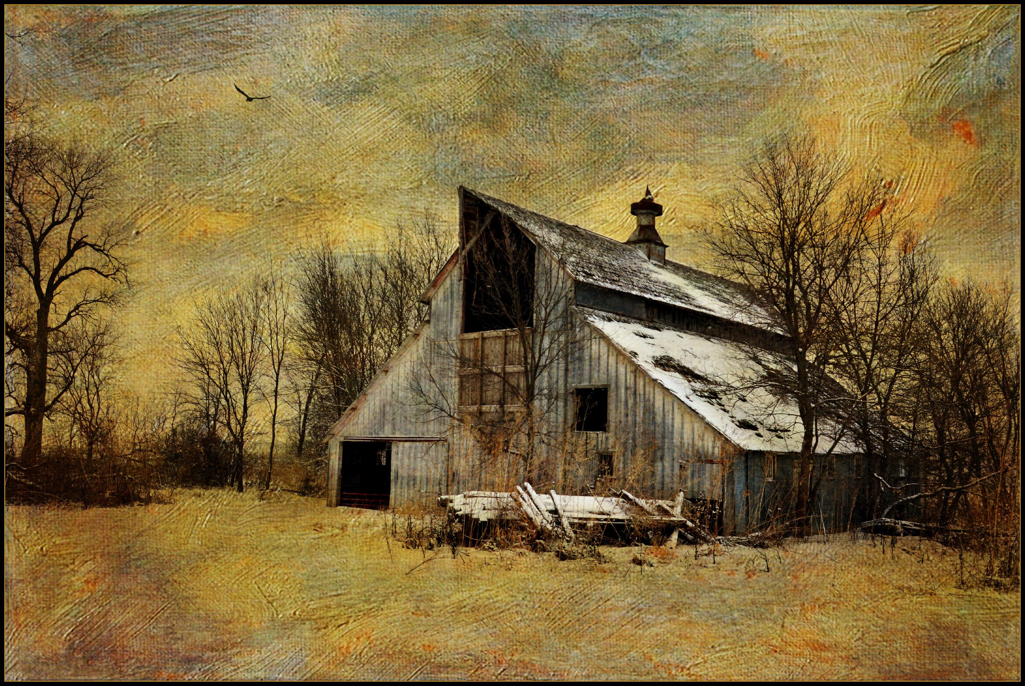 Winter Painterly Texture Abandoned Rural Nikon Farm Country Rustic Barns Iowa D3200 Memoriesbook Distressedjewellbirdbrush Lenabemanna