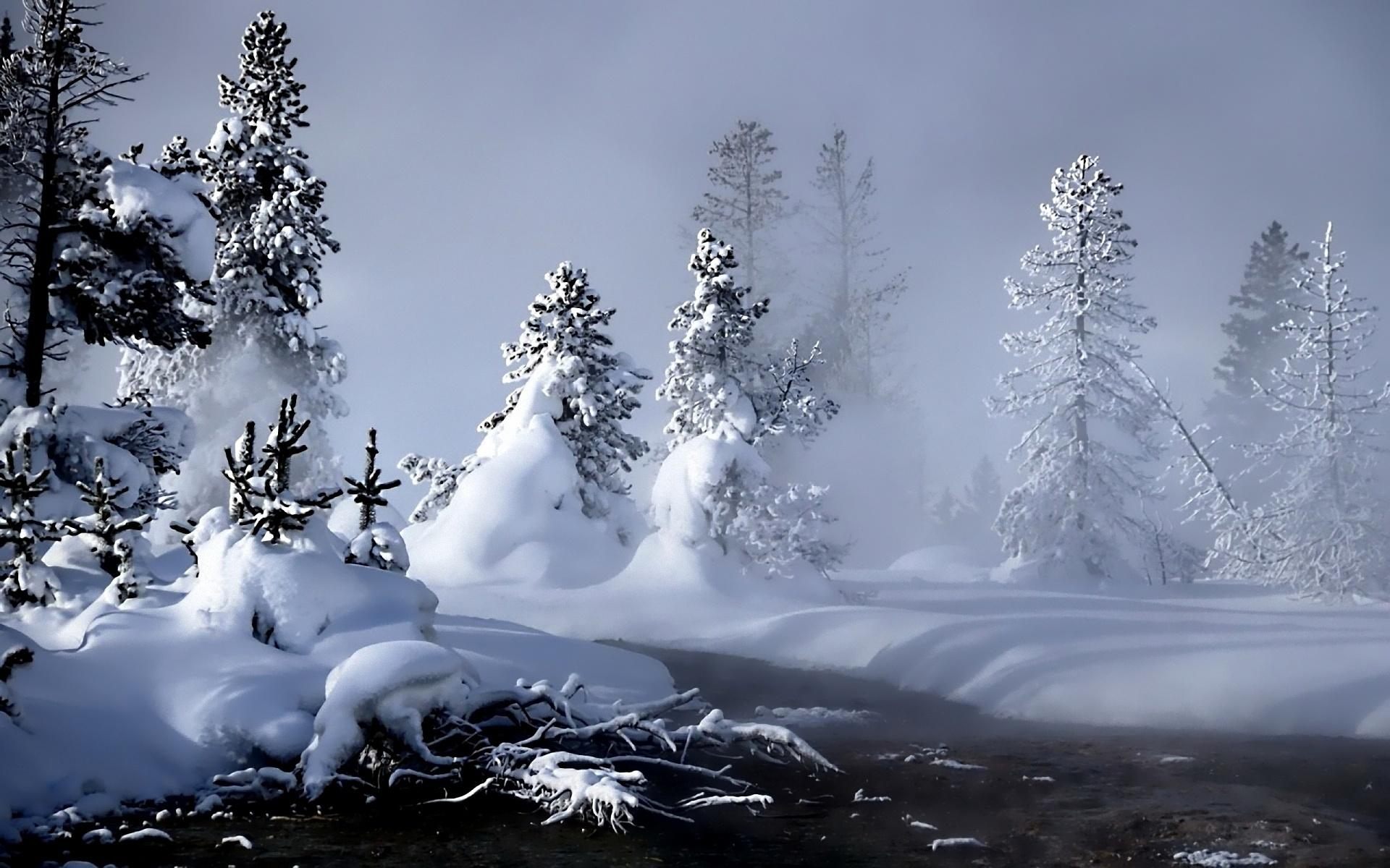Sfondi Inverno Fiume Evaporazione Foresta La Neve 1920x1200