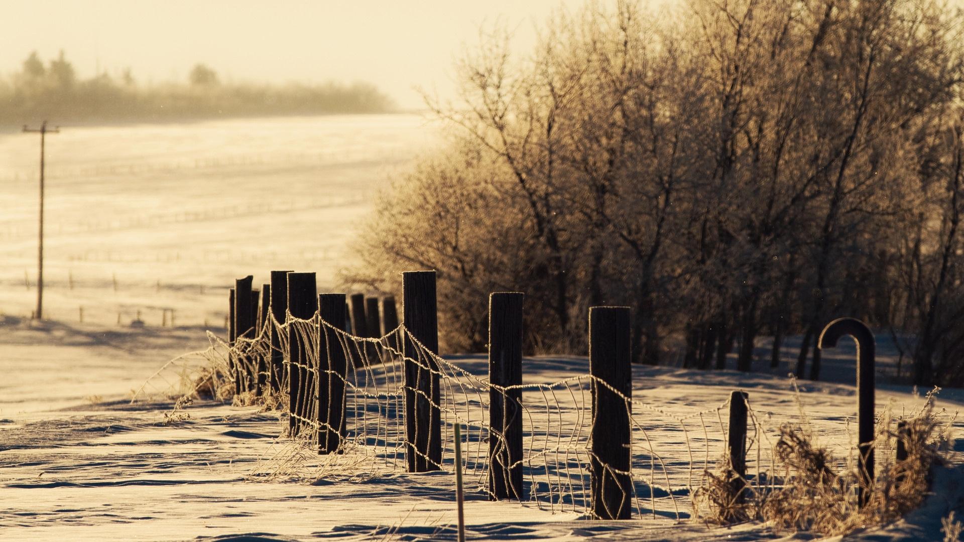 hintergrundbilder : winter, schnee, zaun, schutz, snowdrifts