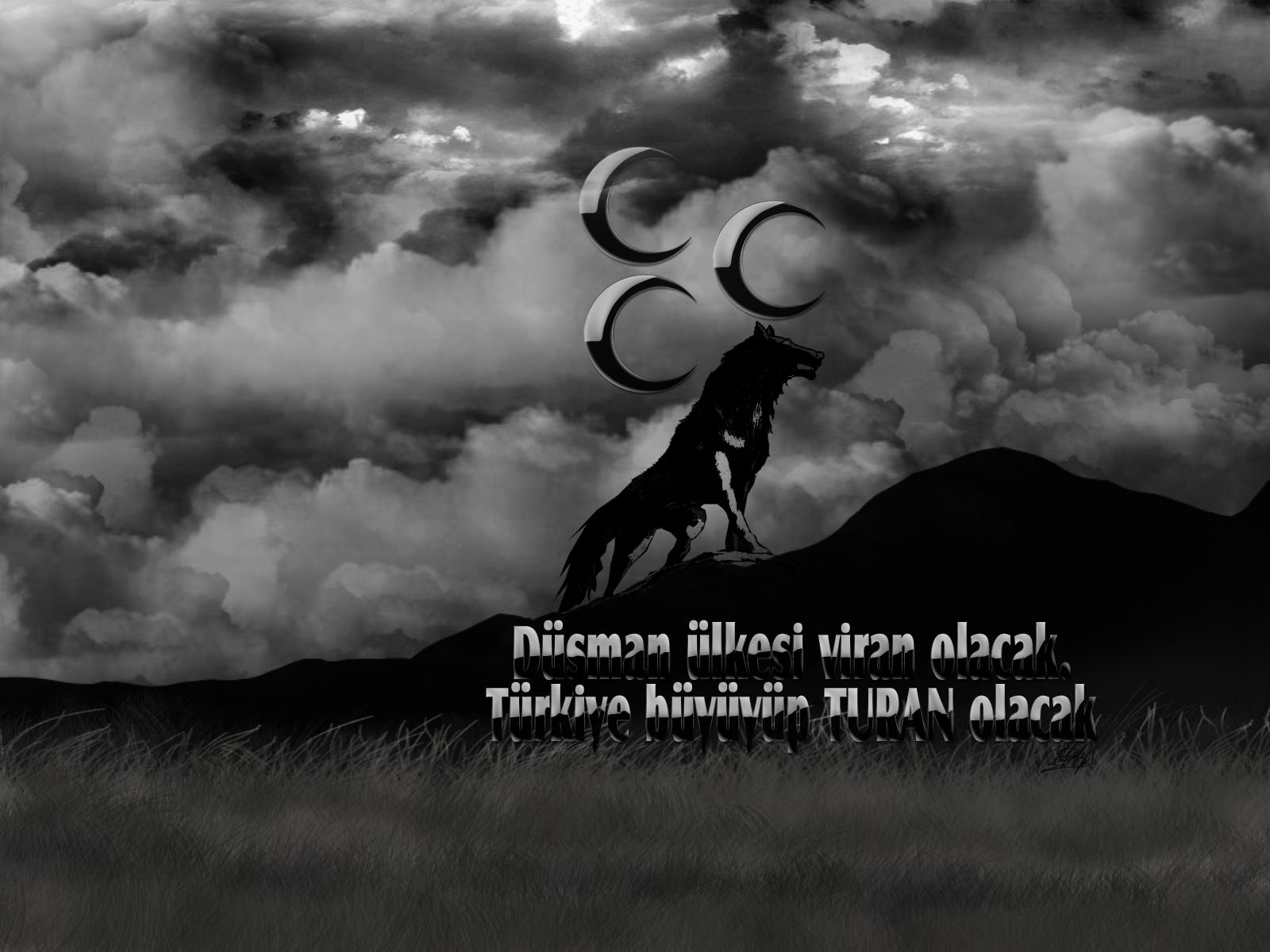 Masaüstü Kurt Türk 1600x1200 Roronoa1903 1356743 Masaüstü