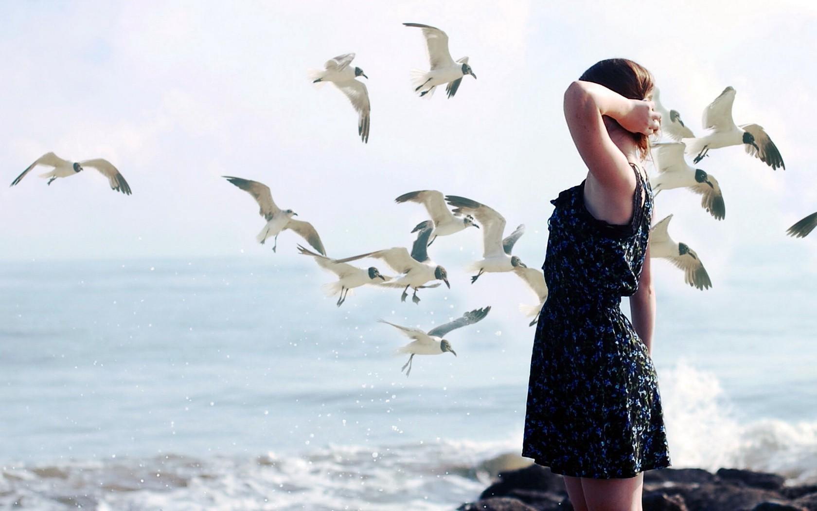 Obrázky dlouhých ptáků