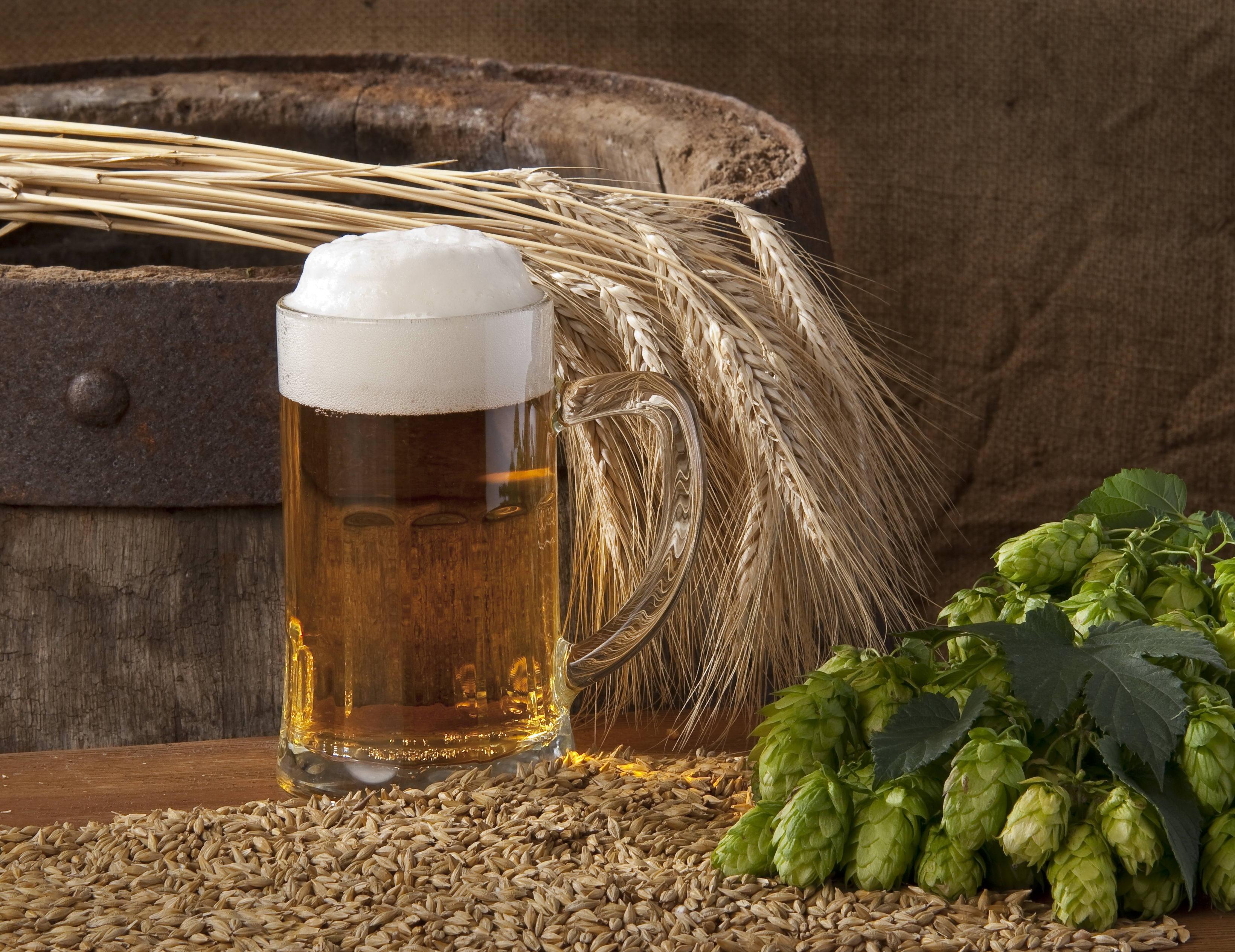 Хмелёфф - пиво в кегах, разливное пиво, живое пиво 58
