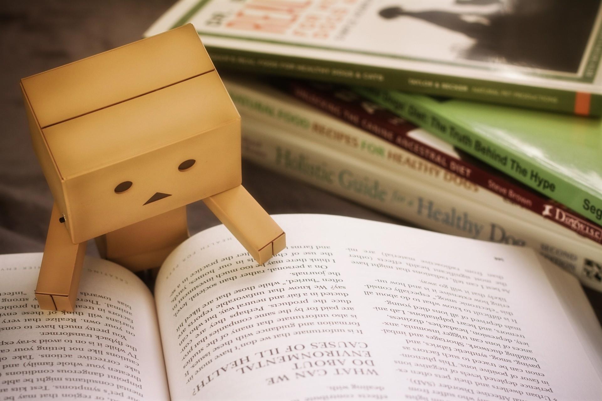 Wallpaper Wood Books Reading Danbo Writing Money