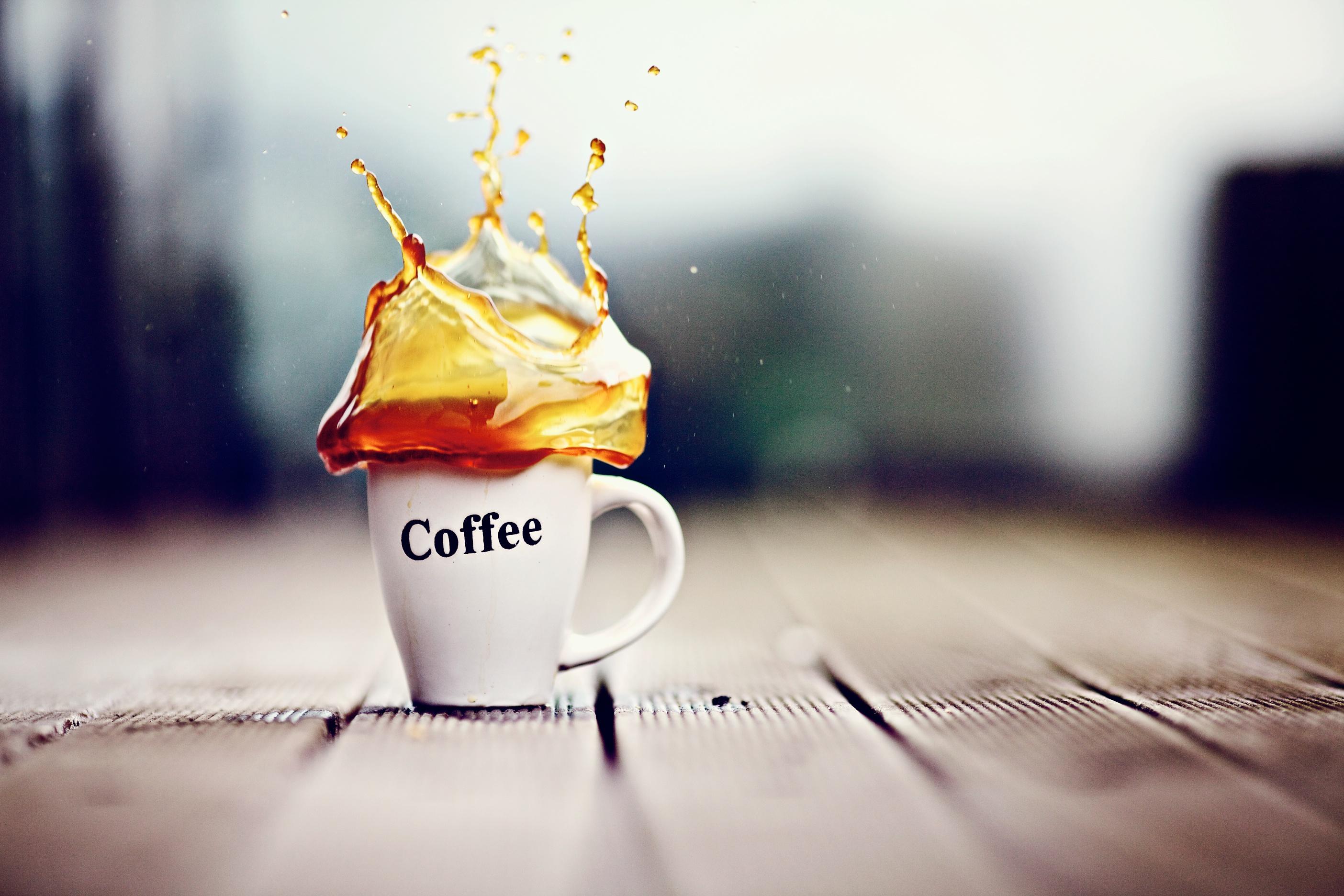 беломорска доброе утро креатив фото цены уменьшению